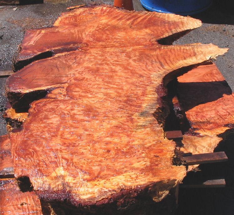 Unfinished Redwood Burl Slabs