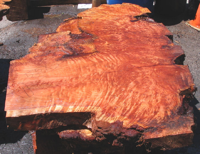 How to finish burl wood slabs ehow ask home design for Finished wood slabs